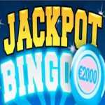 Jackpot Bingo bij BingoCams