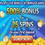 Rollover Fortune Jackpot bij BingoCams